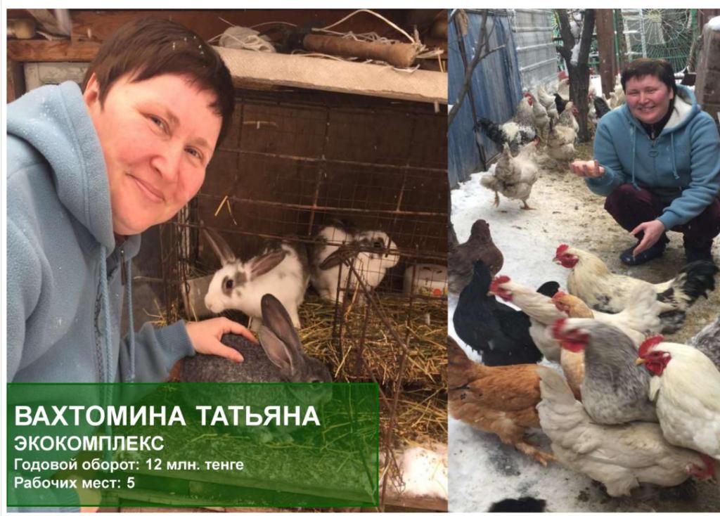ферма по выращиванию кур