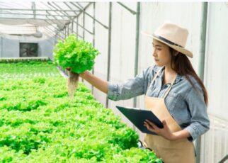 женщина фермер