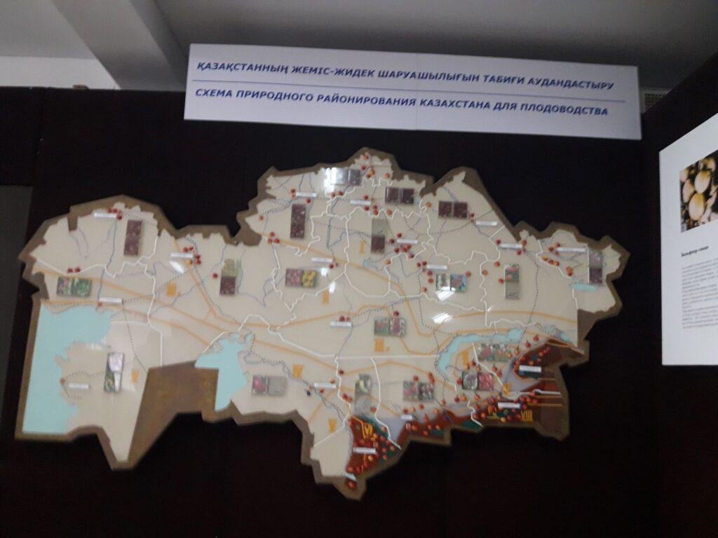 карта районирования