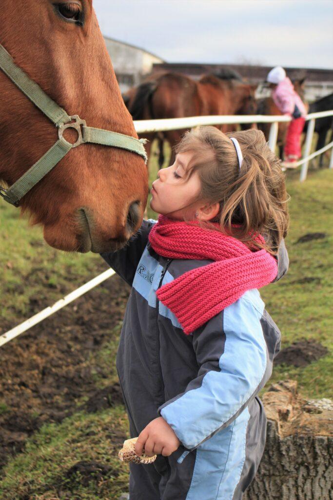 ребенок с лошадью